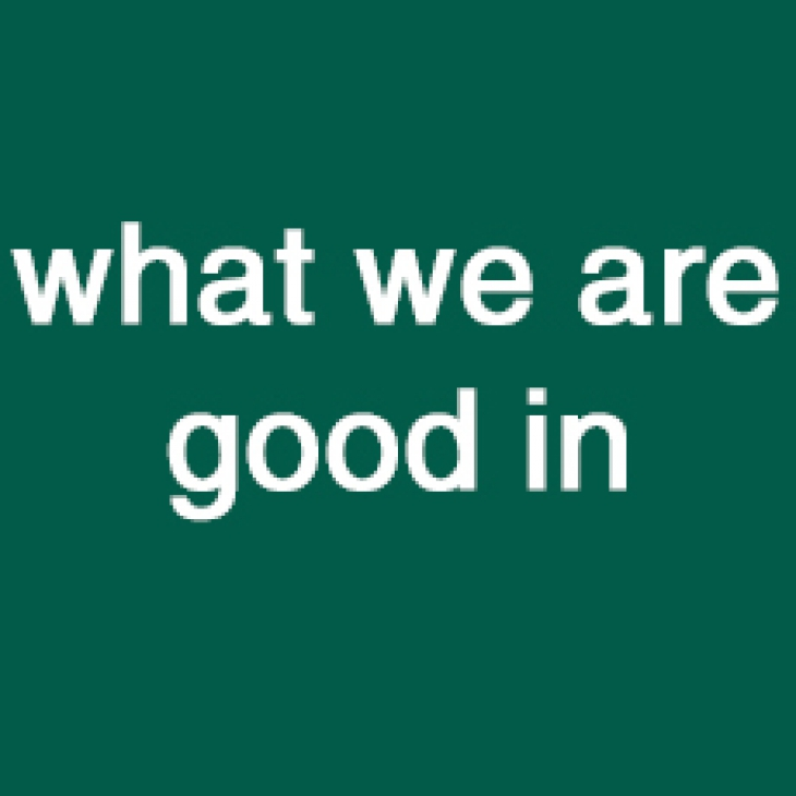 What we are good in
